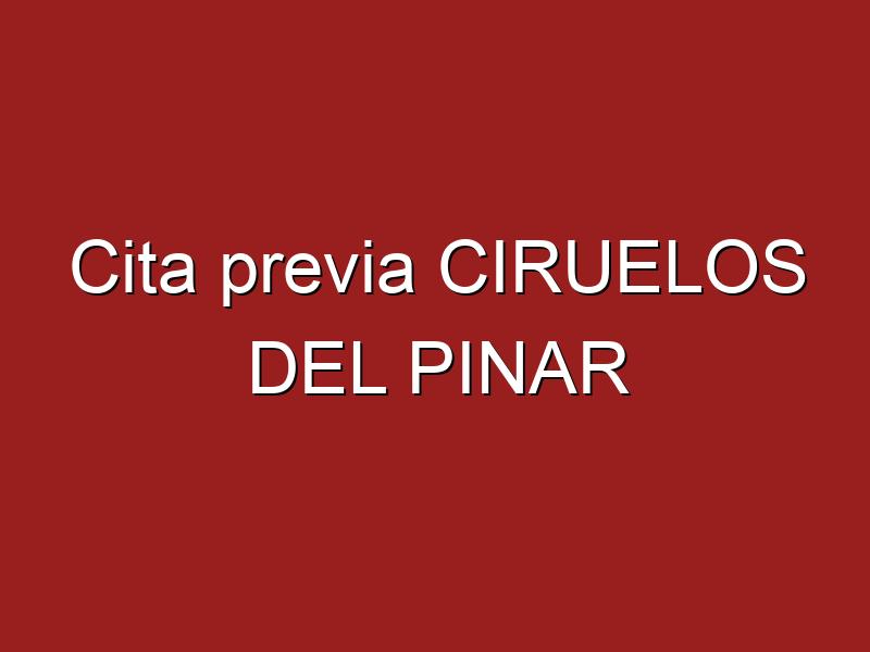 Cita previa CIRUELOS DEL PINAR