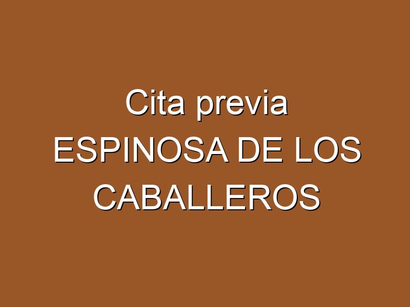 Cita previa ESPINOSA DE LOS CABALLEROS