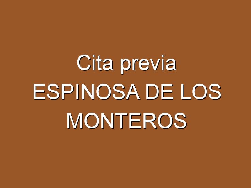 Cita previa ESPINOSA DE LOS MONTEROS