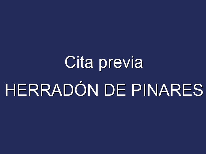 Cita previa HERRADÓN DE PINARES