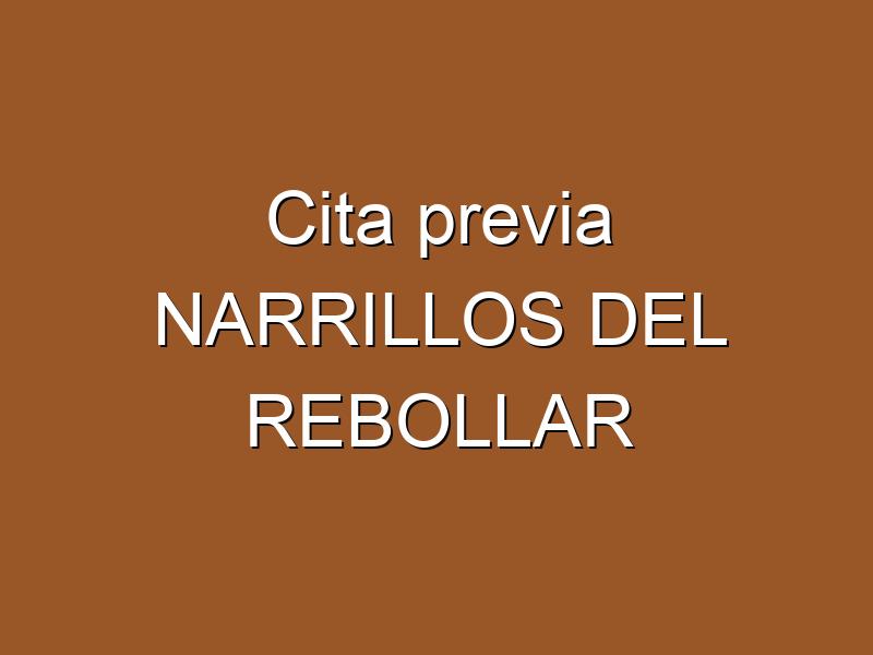 Cita previa NARRILLOS DEL REBOLLAR