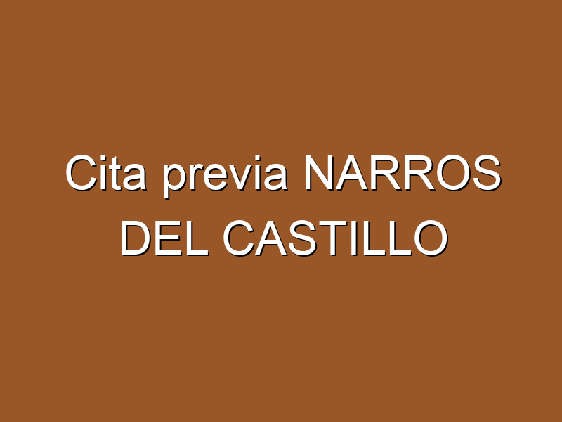 Cita previa NARROS DEL CASTILLO