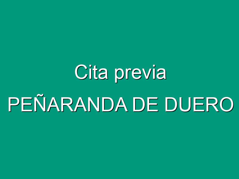 Cita previa PEÑARANDA DE DUERO