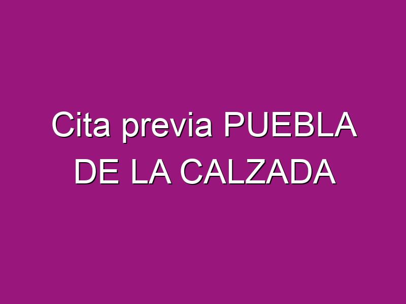 Cita previa PUEBLA DE LA CALZADA