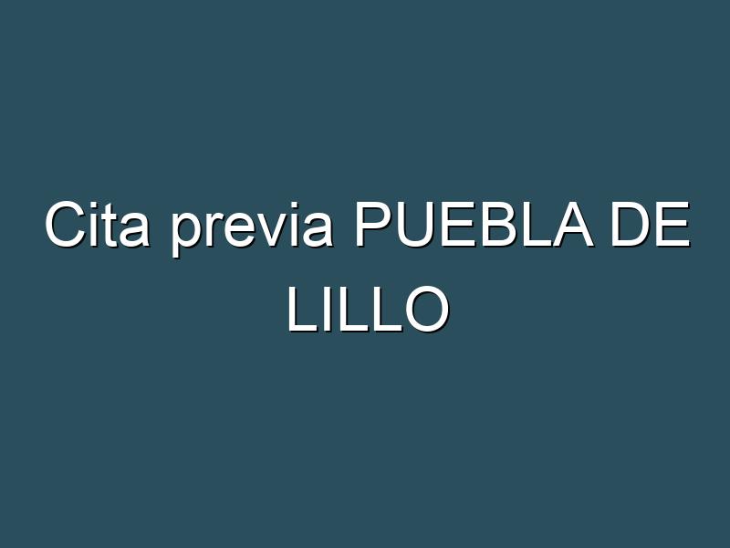 Cita previa PUEBLA DE LILLO