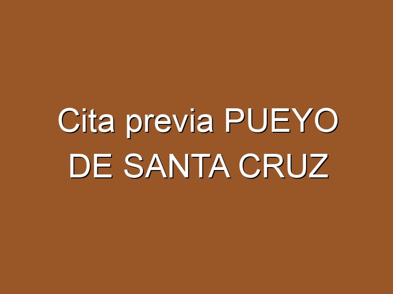 Cita previa PUEYO DE SANTA CRUZ