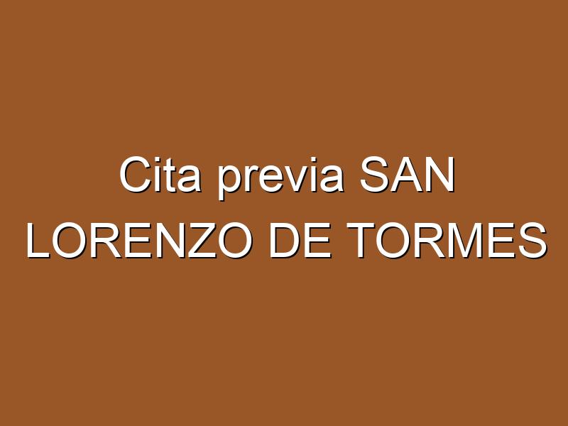 Cita previa SAN LORENZO DE TORMES