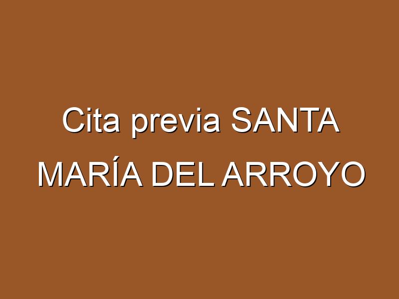 Cita previa SANTA MARÍA DEL ARROYO