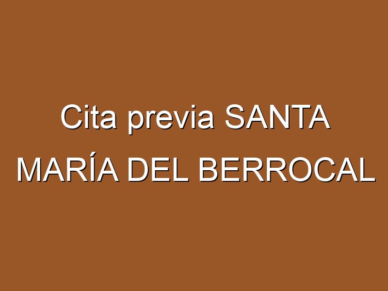 Cita previa SANTA MARÍA DEL BERROCAL