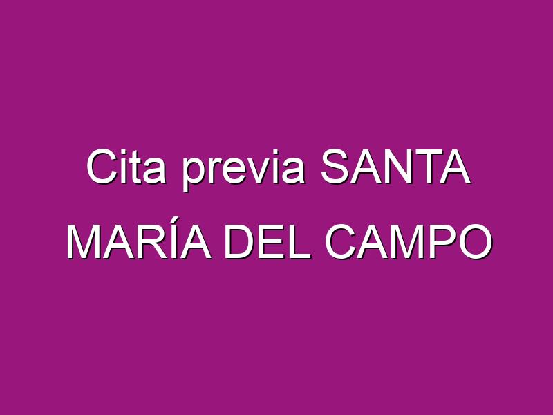 Cita previa SANTA MARÍA DEL CAMPO