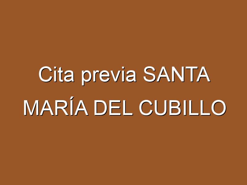 Cita previa SANTA MARÍA DEL CUBILLO
