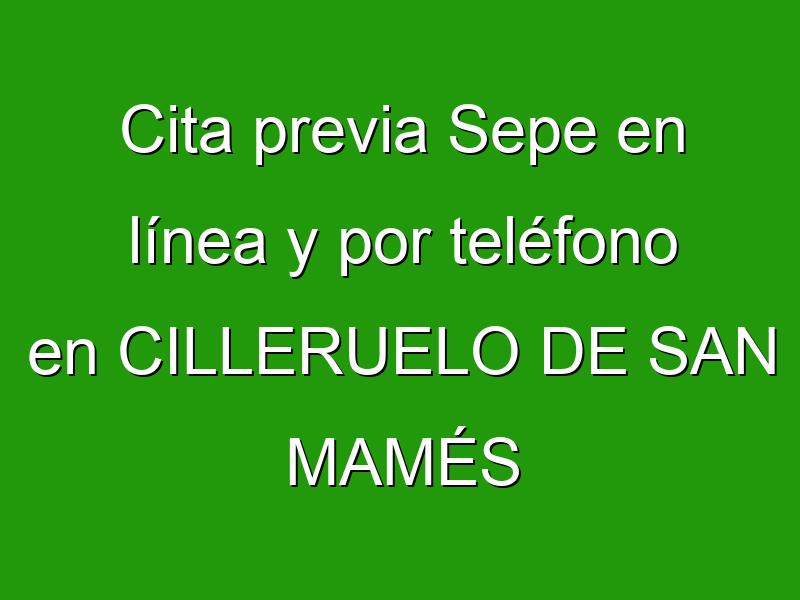 Cita previa Sepe en línea y por teléfono en CILLERUELO DE SAN MAMÉS