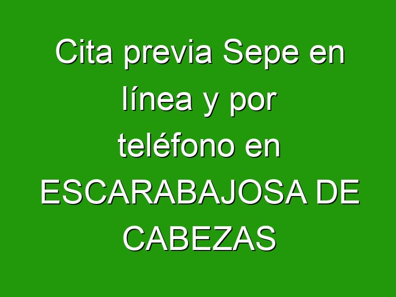 Cita previa Sepe en línea y por teléfono en ESCARABAJOSA DE CABEZAS