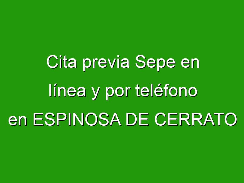 Cita previa Sepe en línea y por teléfono en ESPINOSA DE CERRATO