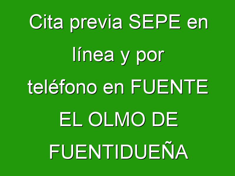 Cita previa SEPE en línea y por teléfono en FUENTE EL OLMO DE FUENTIDUEÑA