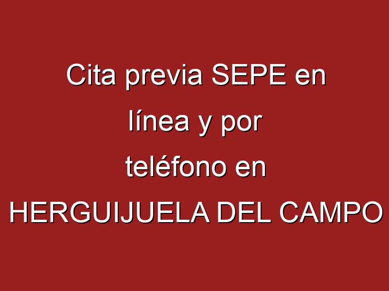 Cita previa SEPE en línea y por teléfono en HERGUIJUELA DEL CAMPO