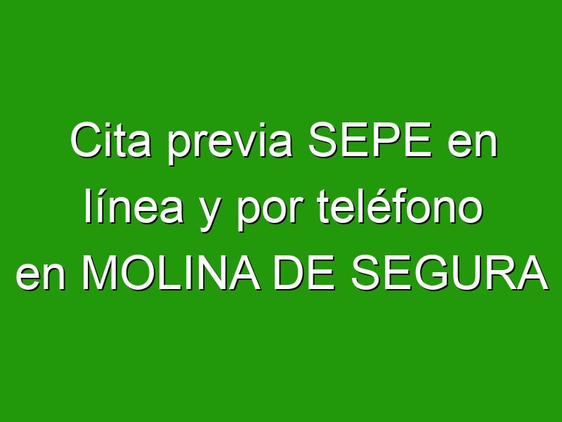 Cita previa SEPE en línea y por teléfono en MOLINA DE SEGURA