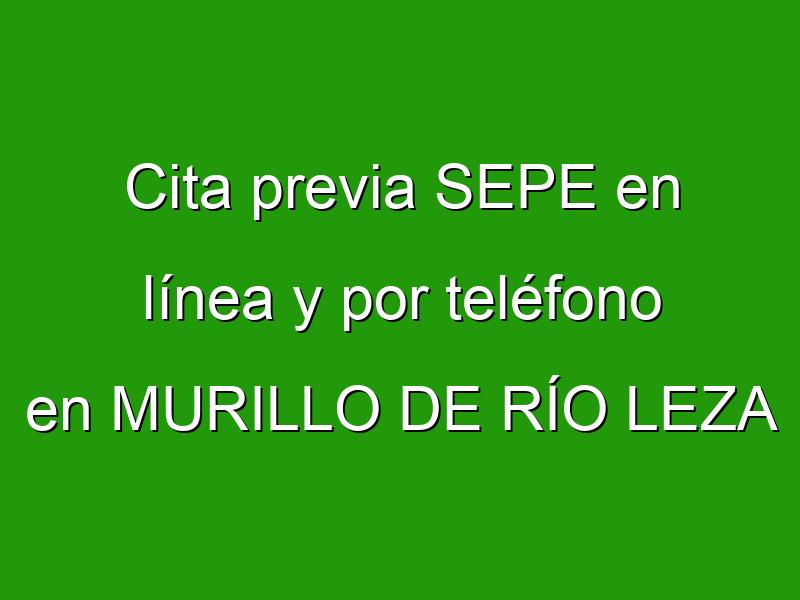 Cita previa SEPE en línea y por teléfono en MURILLO DE RÍO LEZA