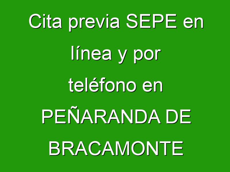 Cita previa SEPE en línea y por teléfono en PEÑARANDA DE BRACAMONTE