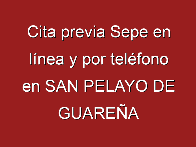 Cita previa Sepe en línea y por teléfono en SAN PELAYO DE GUAREÑA