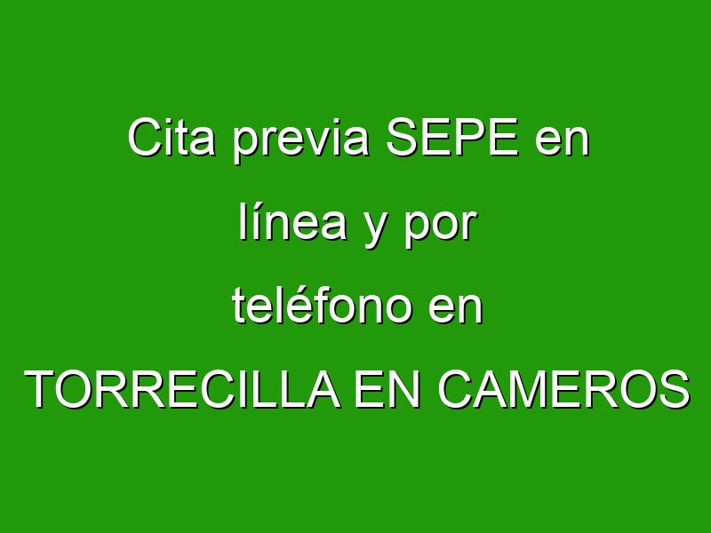 Cita previa SEPE en línea y por teléfono en TORRECILLA EN CAMEROS
