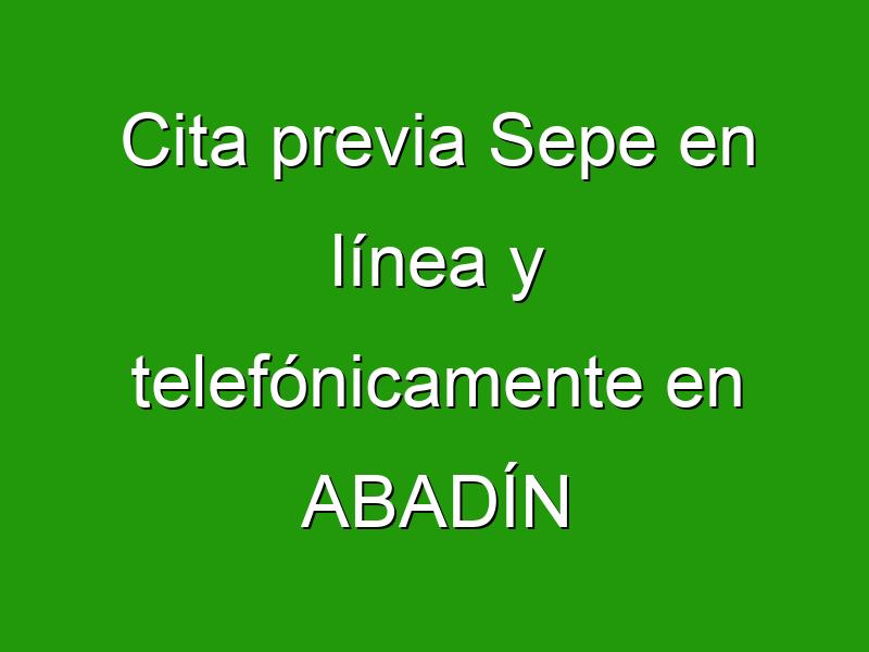 Cita previa Sepe en línea y telefónicamente en ABADÍN