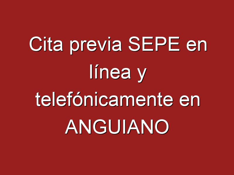 Cita previa SEPE en línea y telefónicamente en ANGUIANO