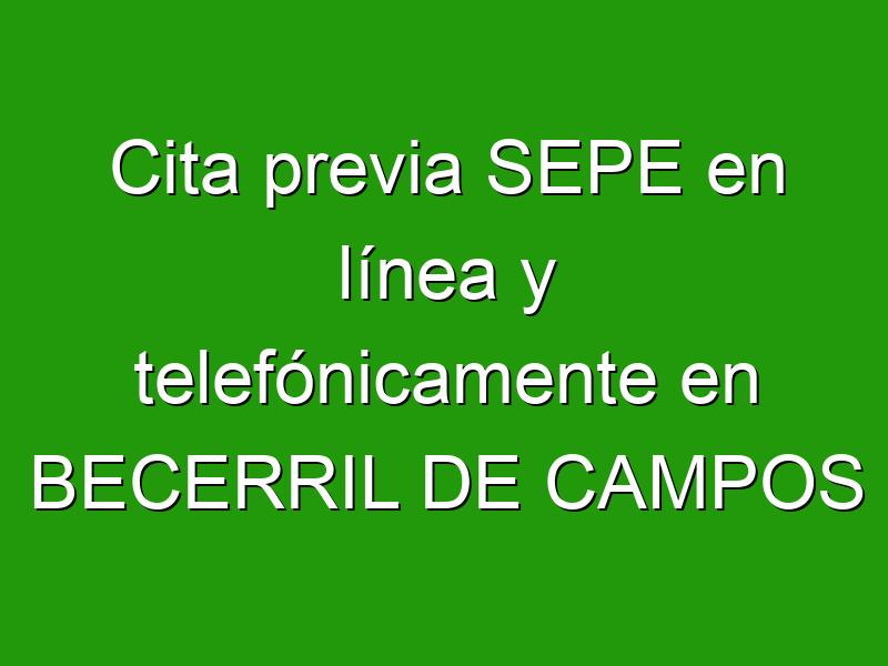 Cita previa SEPE en línea y telefónicamente en BECERRIL DE CAMPOS
