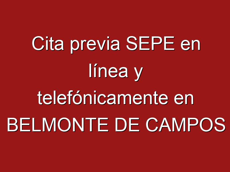Cita previa SEPE en línea y telefónicamente en BELMONTE DE CAMPOS
