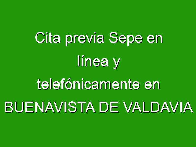 Cita previa Sepe en línea y telefónicamente en BUENAVISTA DE VALDAVIA
