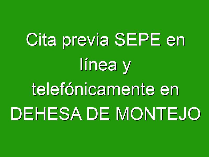 Cita previa SEPE en línea y telefónicamente en DEHESA DE MONTEJO