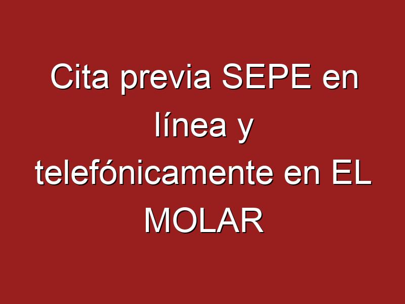 Cita previa SEPE en línea y telefónicamente en EL MOLAR