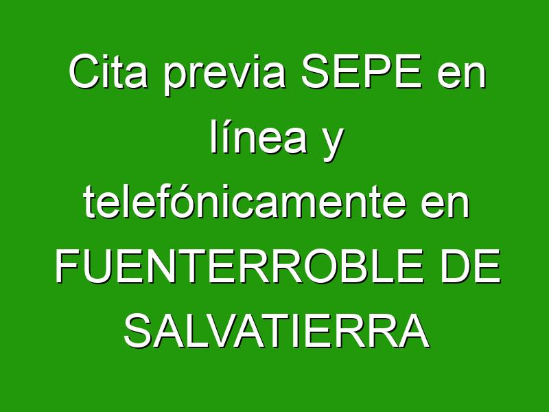 Cita previa SEPE en línea y telefónicamente en FUENTERROBLE DE SALVATIERRA