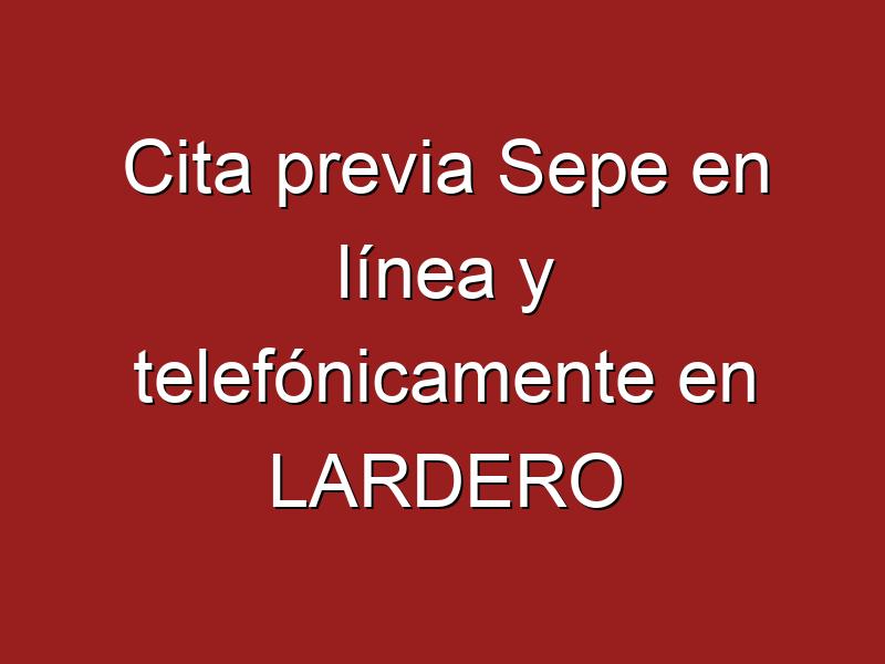 Cita previa Sepe en línea y telefónicamente en LARDERO