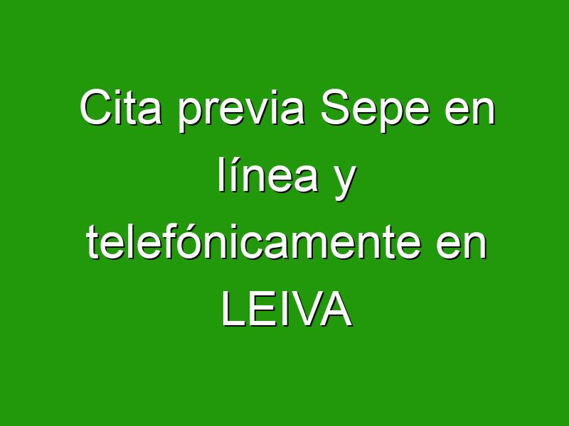 Cita previa Sepe en línea y telefónicamente en LEIVA