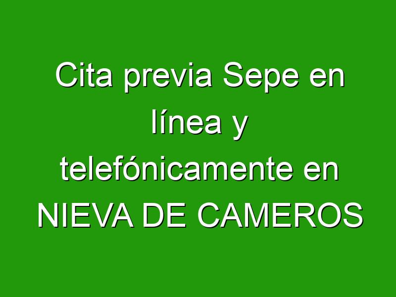 Cita previa Sepe en línea y telefónicamente en NIEVA DE CAMEROS