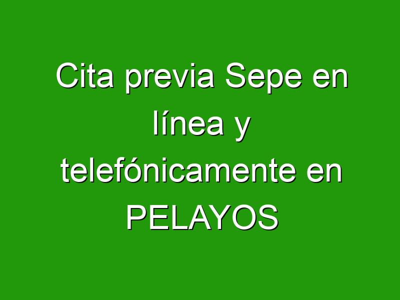 Cita previa Sepe en línea y telefónicamente en PELAYOS
