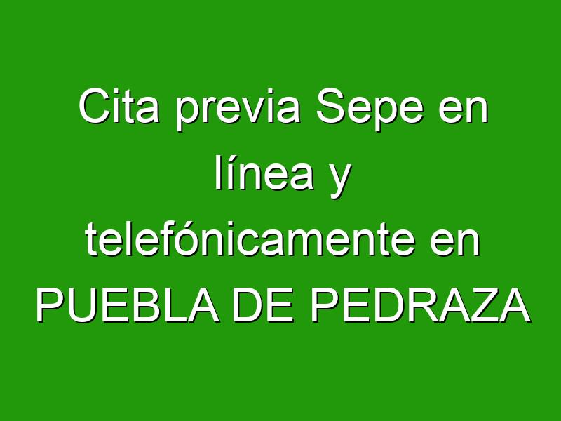 Cita previa Sepe en línea y telefónicamente en PUEBLA DE PEDRAZA