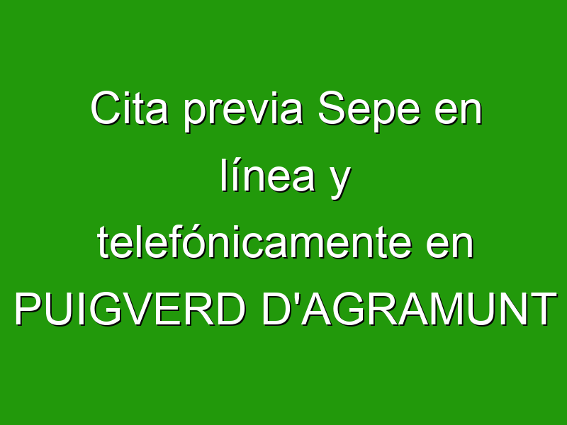Cita previa Sepe en línea y telefónicamente en PUIGVERD D'AGRAMUNT