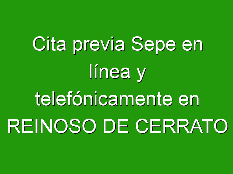 Cita previa Sepe en línea y telefónicamente en REINOSO DE CERRATO