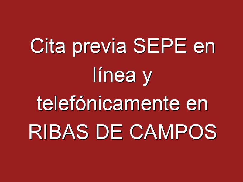 Cita previa SEPE en línea y telefónicamente en RIBAS DE CAMPOS