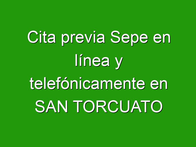 Cita previa Sepe en línea y telefónicamente en SAN TORCUATO