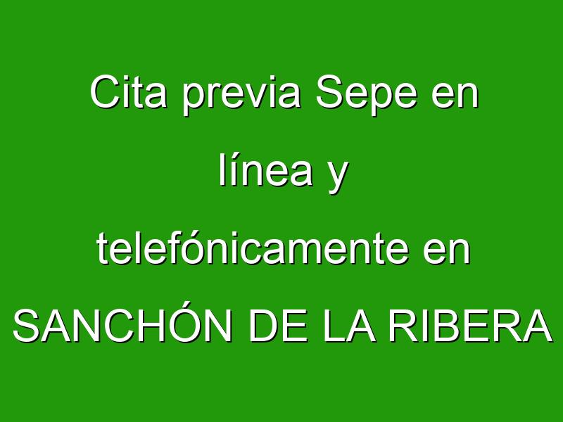 Cita previa Sepe en línea y telefónicamente en SANCHÓN DE LA RIBERA