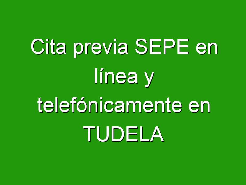 Cita previa SEPE en línea y telefónicamente en TUDELA