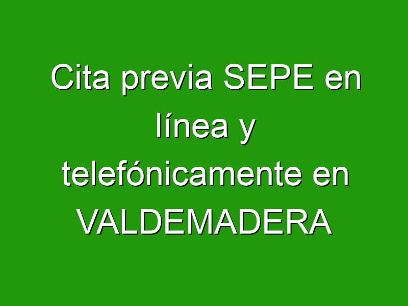 Cita previa SEPE en línea y telefónicamente en VALDEMADERA
