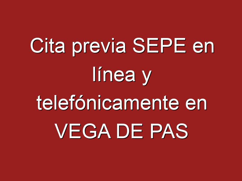Cita previa SEPE en línea y telefónicamente en VEGA DE PAS