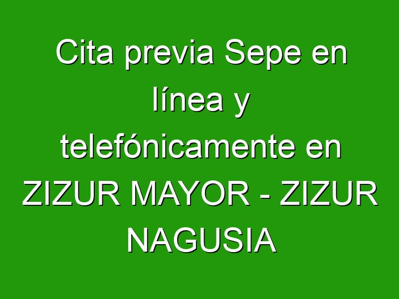 Cita previa Sepe en línea y telefónicamente en ZIZUR MAYOR - ZIZUR NAGUSIA