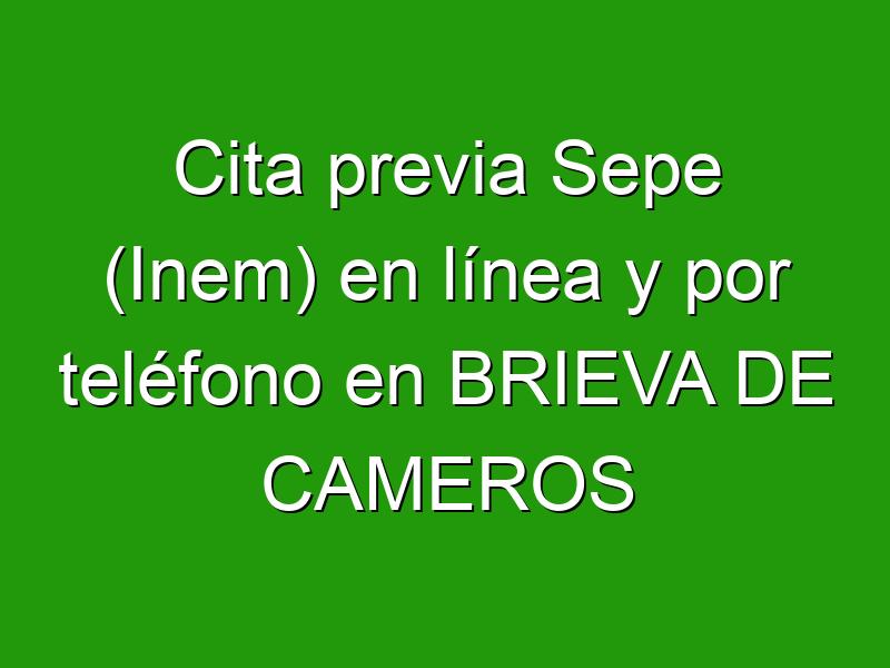 Cita previa Sepe (Inem) en línea y por teléfono en BRIEVA DE CAMEROS
