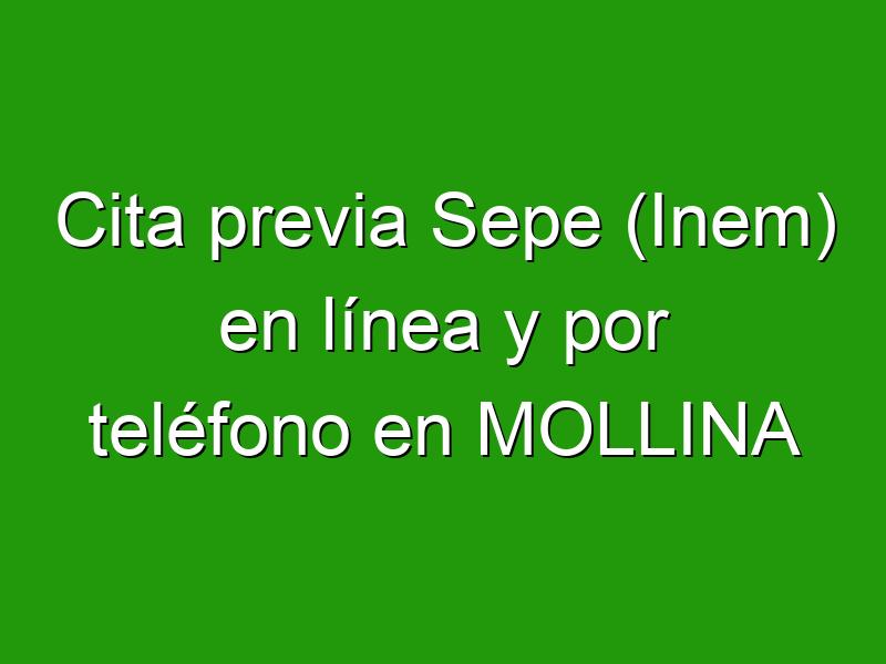 Cita previa Sepe (Inem) en línea y por teléfono en MOLLINA