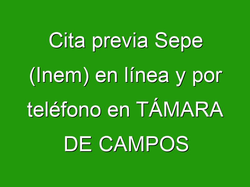 Cita previa Sepe (Inem) en línea y por teléfono en TÁMARA DE CAMPOS
